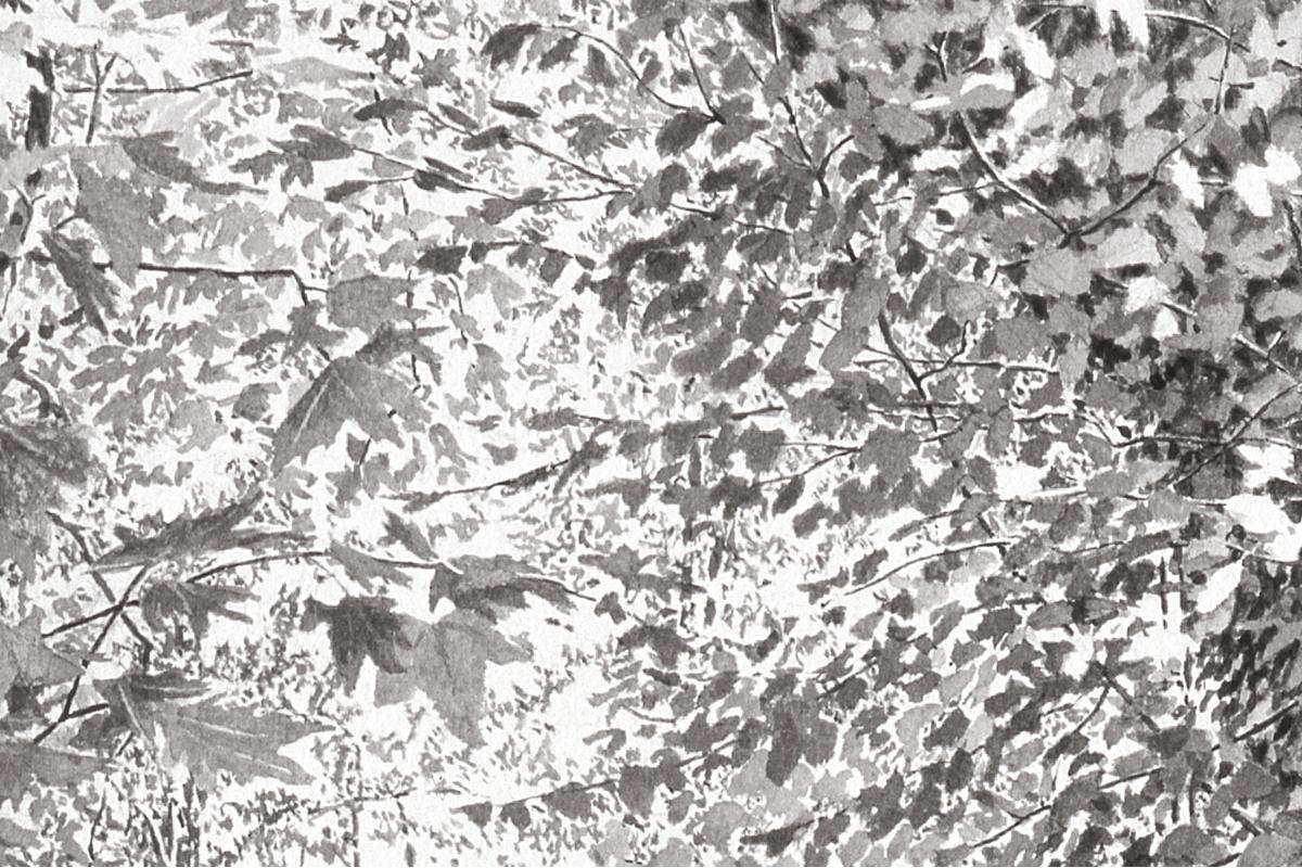 21-cabane-septembre-05-encre-sur-papier-48x60cm-detail